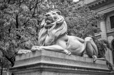 Lion statue at the Public Library, New York City, USA
