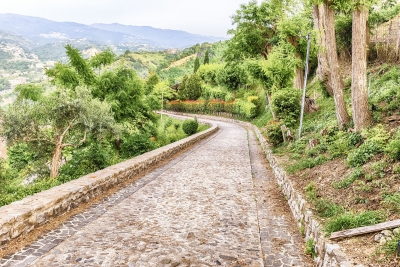 Stone paved road surrounded by nature
