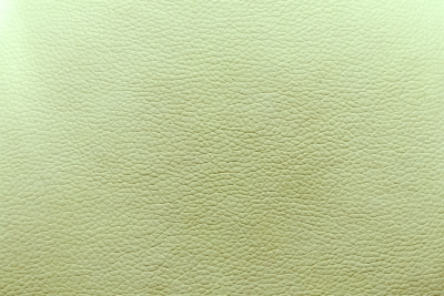 Background of a emerald leather texture