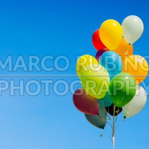 Colorful bunch of helium balloons isolated on background