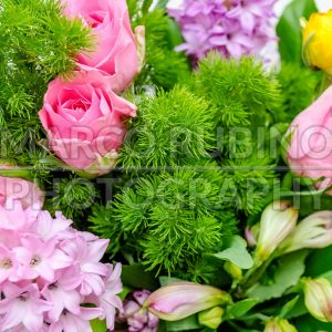 Colorful mix of flowers