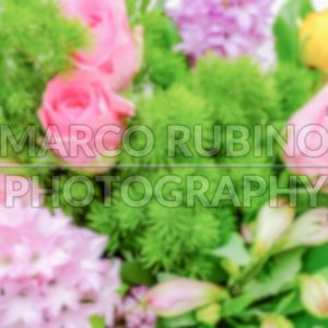 Defocused background of a colorful mix of flowers