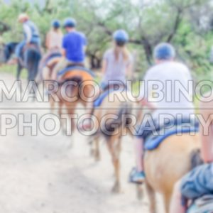 Defocused background of a group of horse riders