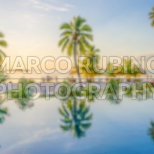 Defocused background of palms reflecting on an infinity pool