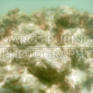 Defocused background of white sandy beach in Salento, Italy