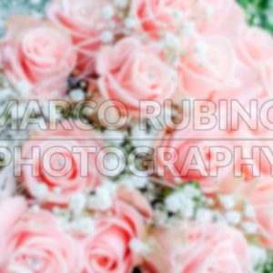 Defocused background with bouquet of pink roses