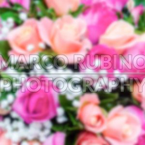 Defocused background with bouquet of roses