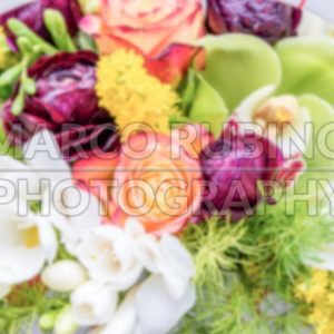 Defocused background with colorful mix of flowers