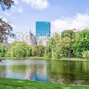 Idillic view in the Boston Public Garden, USA