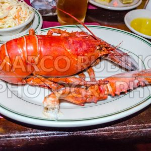 Lobster served in a traditional New England restaurant, Boston, USA
