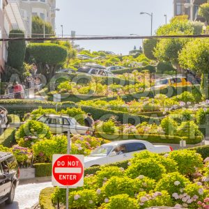 Lombard Street in San Francisco, USA