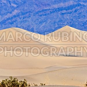 Sand Dunes, Death Valley, USA