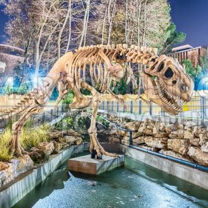Dinosaur skeleton in amusement park at night