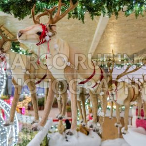 Santa Claus's puppet reindeer, decoration for Christmas