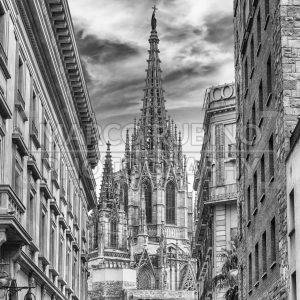 Scenic view of the Barcelona Cathedral, Catalonia, Spain