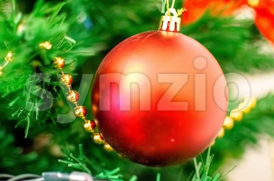 Christmas red ball on a branch with beautiful blur Stock Photo