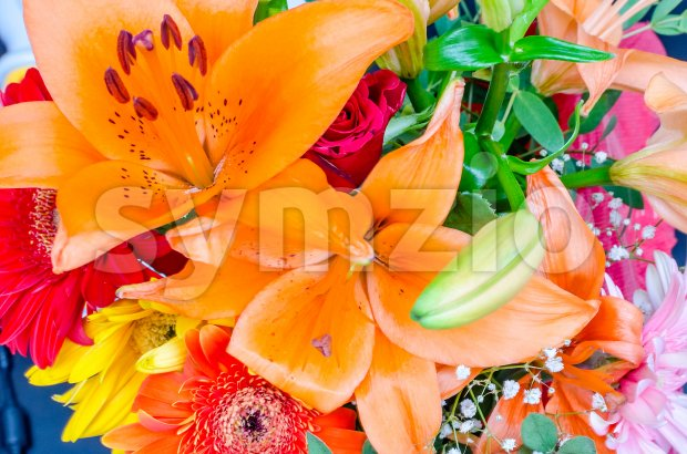 Close up with a colorful mix of flowers Stock Photo