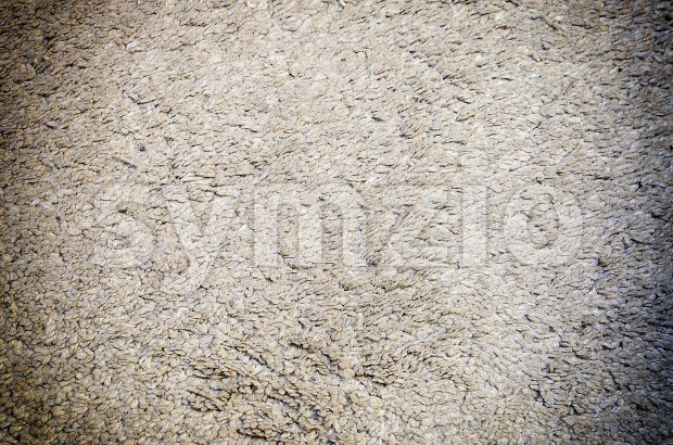 White grey carpet texture for background with vignette Stock Photo