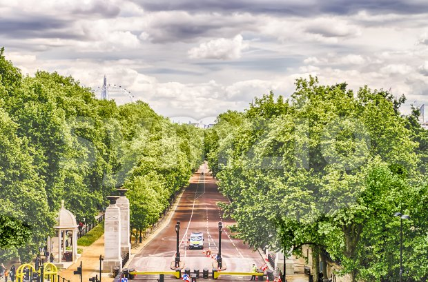 View over Green Park and Buckingham Palace Gardens, London, UK Stock Photo