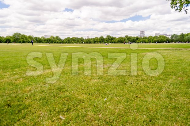 Large lawn in Hyde Park, London, UK