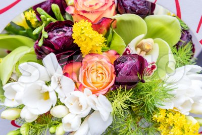 Colorful mix of flowers Stock Photo