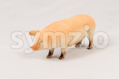 Toy pig model Stock Photo