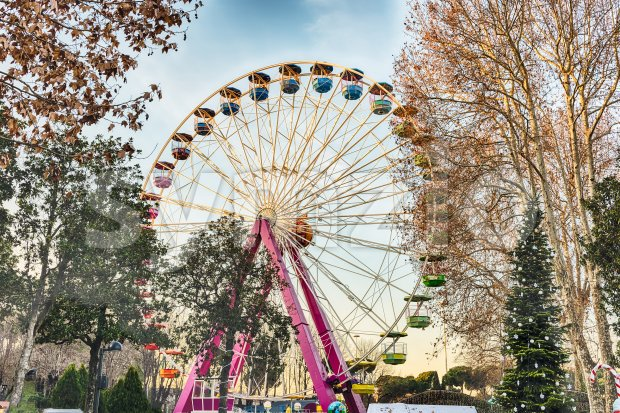 Ferris Wheel surrounded by trees Stock Photo