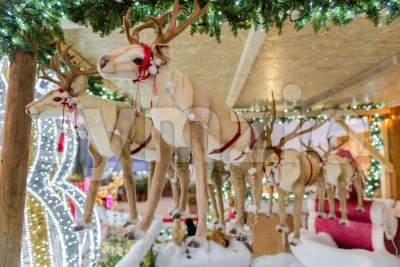 Santa Claus's puppet reindeer, decoration for Christmas Stock Photo