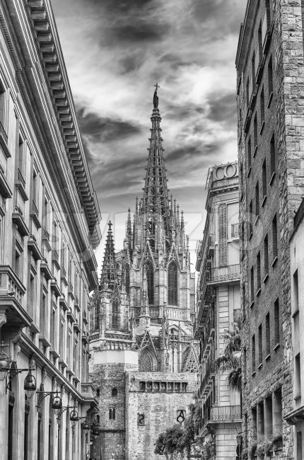 Scenic view of the Barcelona Cathedral, Catalonia, Spain Stock Photo