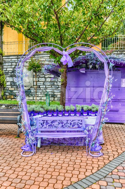 Scenic heart-shaped violet bench decorated with flowers and laces Stock Photo